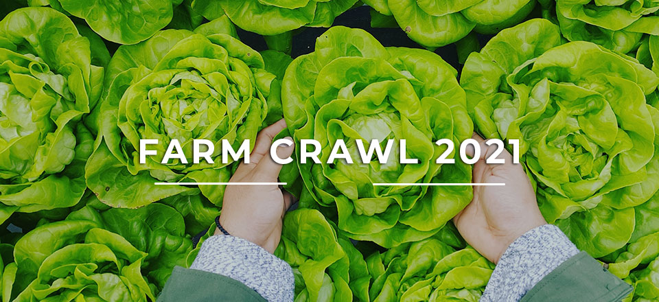 Township of Tiny Farm Crawl